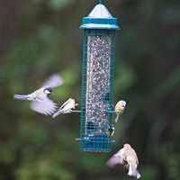 Brome Squirrel Buster Classic Bird Seed Feeder