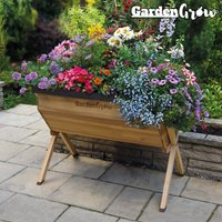 Garden Grow Large Wooden Planter with £20 worth of veg seed