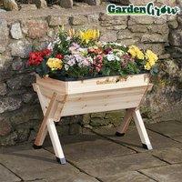 Garden Grow Medium Wooden Planter with £20 worth of veg seed