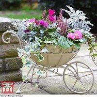 Metal Wheelbarrow Planter