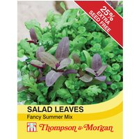 Salad Leaves