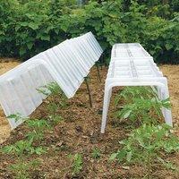 Pegs Mini Greenhouse Cloche (Pack of 10)