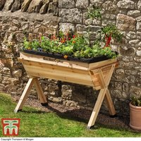 Garden Grow Raised Large Wooden Planter - Gift