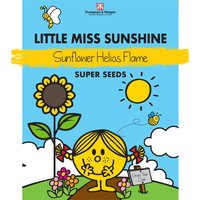 Little Miss Sunshine - Sunflower