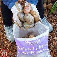 Decorative Scottish Cobbles Aggregate