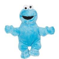 Sesamstraat Pluche Cookie Monster 63Cm