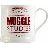 Harry Potter Muggle Studies Boxed Vintage Mug - Harry Potter Gifts
