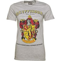 Women's Grey Harry Potter Gryffindor Team Quidditch T-Shirt - Tshirt Gifts