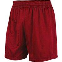 Prostar Omega Shorts (maroon)