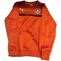 2014-2015 Airdrieonians Puma Sweat Top (Red)