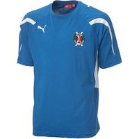 2012-13 Hawick Royal Albert Training Jersey (Blue)