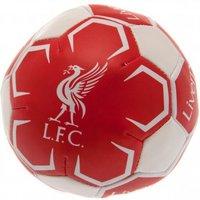 Liverpool F.C. 4 inch Soft Ball