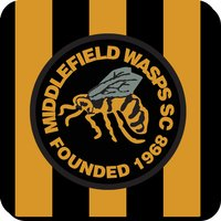 Middlefield Wasps Official Coaster (Black-Yellow)