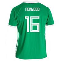 2018-19 Northern Ireland Home Football Shirt (Norwood 16)