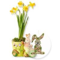 Gelbe Narzisse in Häschentopf und Türhänger Honey Bunny