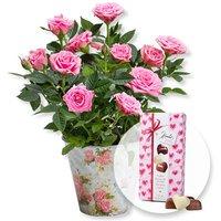 Rosafarbene Rose im romantischen Nostalgie-Topf und Herz-Pralinen-Trio