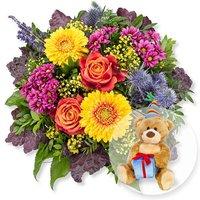 Colours und Glückwunsch-Teddy