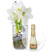 Weiße Amaryllis im Glas und Freixenet Semi Seco