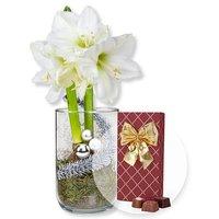 Weiße Amaryllis im Glas und Belgische Pralinen-Auslese