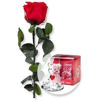 1 haltbare Rose rot und Glasbär mit Herz