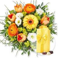 Frühlingssonne und Belgische Pralinen