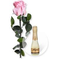 Rosafarbene Infinity-Rose und Freixenet Semi Seco