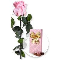 Rosafarbene Infinity-Rose und Belgische Pralinen-Auslese
