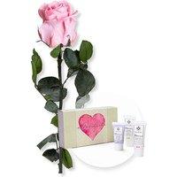 Rosafarbene Infinity-Rose und Handpflegeset Alles Liebe