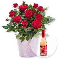 Image of Rote Rose im Topf und Alkoholfreier Erdbeer-Secco