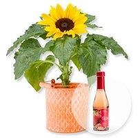 Sonnenblume im Zink-Topf und Alkoholfreier Erdbeer-Secco