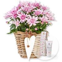 Image of Violette Chrysantheme im Korb und Blütenrausch Pfingstrosen-Handcreme Für Dich