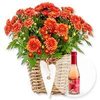 Image of Orangefarbene Chrysantheme im Korb und Alkoholfreier Erdbeer-Secco