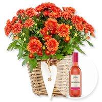 Image of Orangefarbene Chrysantheme im Korb und Freixenet Mederano Rosado