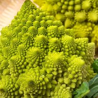 Broccoli 'Romanesco' (Seeds)