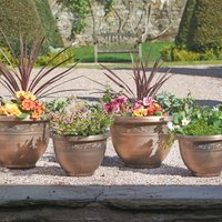 4 Pack Of Antique Effect Planters