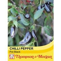 Chilli Pepper Pot Black