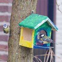 Vivara Baupaket Futterhaus Jingo