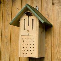 Insekten - Duo-Kasten Biene und Schmetterling Grün