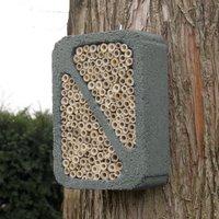 Insekten - Insektenblock Grau