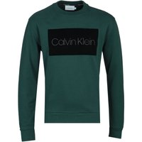 Calvin Klein Evergreen Block Logo Sweatshirt