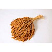 Moreau Französische Kolbenhirse gelb 15kg