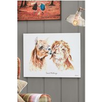 Next Artist Collection Sweet Nothings by Jane Bannon Canvas - Natural