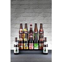 Next Brown Introduction To Belgian Beer Case - Brown