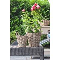 Next Set of 2 Polyrattan Basket Planters - Natural