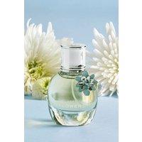 Womens Next Flowers 30ml Eau De Parfum - Blue