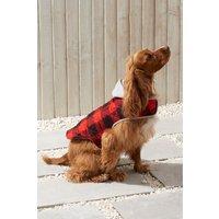 Next Lumberjack Dog Coat - Red