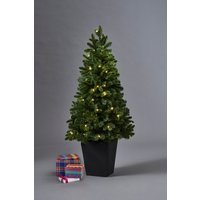 Next 80 LED Potted 4ft Christmas Tree - Green