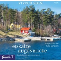 Eiskalte Augenblicke, 4 Audio-CD Hörbuch