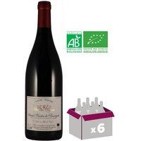 DOMAINE VALLEE MERCIER St Nicolas de Bourgueil 2015 Vin rouge 75 cl x6