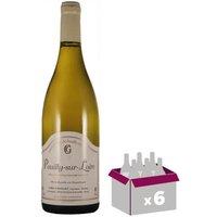 Pouilly sur Loire  Domaine Chollet  blanc 2017 x6